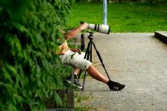 Shooting-Seerosen-19