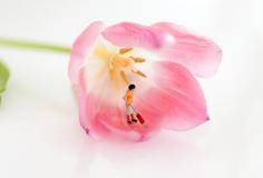 BlumenFruehjahrsputz_ThomasSprenger