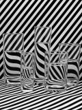 0028_Zebra_SprengerThomas