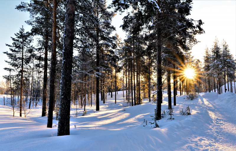 0157_Finnland_Annemarie_Maldoner-2