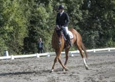 Pferdetag-3-von-13