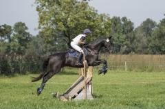 Pferdetag-6-von-13