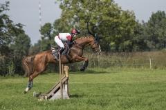 Pferdetag-7-von-13