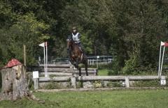 Pferdetag-8-von-13