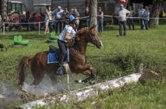 Pferdetag-9-von-13