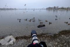 Vogelshooting_Manfred_Gasser (26)