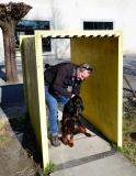Fotoshooting_Hunde_Inatura-45