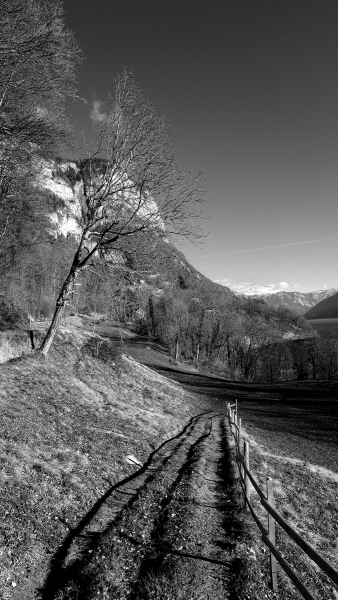 Fotoausflug-Walter-Thomas-Fred-8